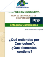 enfoques curiculares.ppt