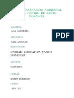 (392854343) Monografia de La Contaminacion Ambiental en El Centro de Santo Domingo