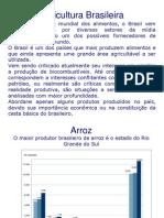 15315-agricultura-brasileira-1219158151912603-8.ppt