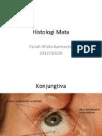 Histologi Mata.pptx
