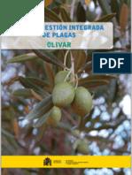 Guia Cultiu de l'Olivera - Guia cultivo olivar