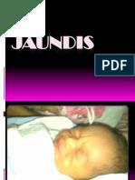 Jaundis.pptx
