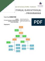 Perfil Subdirector Ejecutivo Programas