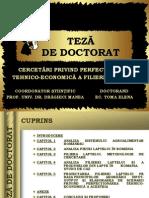 87439694 TEZA Filiera Lapte