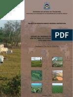 Dinamica_Faixa_Centro_Tocantins.pdf