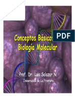 biomol1 Conceptos basicos de biologia molecular