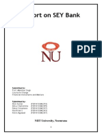 Project Report_FIM_SEY BANK Final