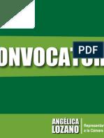 Convocatoria equipo asesor Angélica Lozano