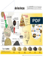 Infografía La quinua