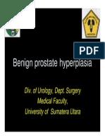 Gus156 Slide Benign Prostate Hyperplasia