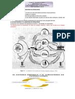 El Sistema Empresa y El Subsistema de Operaciones
