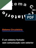 Sistema circulatório - continuiação
