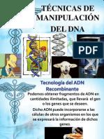 Manipulacion Del DNA