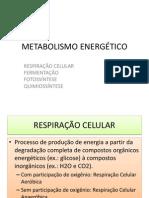 2012 - Tmedicina - Biologia - Flávio - Metabolismo_energético