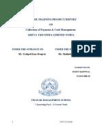 Summer Training Report-Areva Company