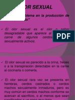16.-Inmunocastración.pdf