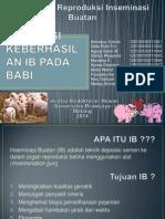Evaluasi Keberhasilan IB Babi
