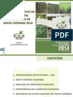 Anuário da base florestal de SC
