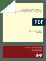 Antropologia y Consultoria-libre