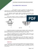 ventosas.PDF
