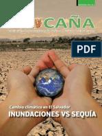 Revista Procaña Edicion Enero 2015