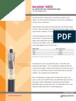 Fiber-Strain.pdf