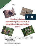 1Etude de La Faune Auxliaire Sur Le Vignoble de Tavel
