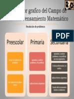 Organizador Grafico Del Campo de Formación Pensamiento Matemático