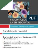 Fisiopatología de La EHI Neonatal