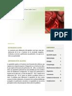 PAE Apendicitis