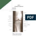 radiologi imaging in reumatoid artritis