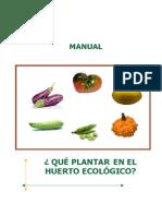 Qué Plantar en El Huerto Ecológico