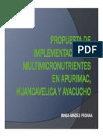 Chispitas_propuesta+Perú_2009[1].pdf