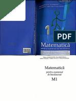 matematica_bac_m1