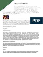 Casino-Job-Beschreibungen und Pflichten