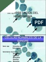 interpretaciondelhemograma-100721165741-phpapp02
