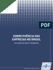 Sobrevivencia_das_empresas_no_Brasil=2013