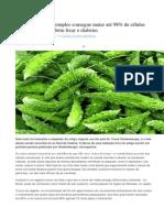 MELÃO-DE-SÃO-CAETANO - Uma planta muito simples consegue matar até 98% de células cancerígenas e também frear o diabetes.docx