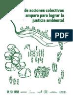 Manual Acciones Colectivas