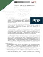 Nsc Proyecto Buenas Practicas Amnbientales 2014