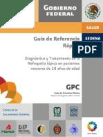 IMSS_173_09_GRR_Nefropatia_lupica