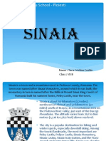 Proiect - Sinaia Presentation