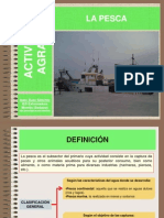 pesca.ppt