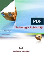 A 02 PUB Analiza de Marketing 2013