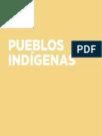 Pueblos Indígenas 172 177