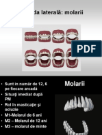 8-molarii- curs 8.ppt