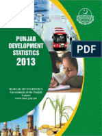 Punjab Developmental Statistics 2013