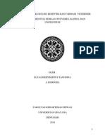 Laporan Praktikum pembuatan sediaan Pulveres dan unguentum