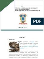 PLATA.pdf