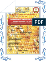 DETERMINACION DE POBLACION DE ABEJAS.docx